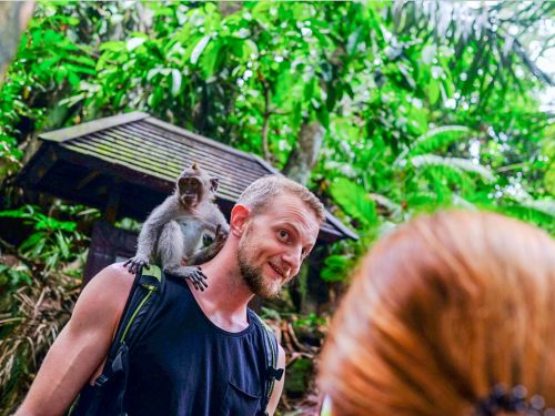 I visited the sacred forest in Bali where hundreds of wild monkeys swing through the trees, crack coconuts, and snatch iPhones straight out of tourists' hands - and it was like nowhere I'd been before
