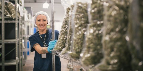 Millennials are snapping up the world's largest publicly traded marijuana company ahead of its earnings report