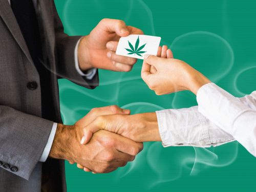 The world's largest cannabis companies are jockeying to dominate the lucrative US market. 7 top CEOs and executives break down the deals you can expect