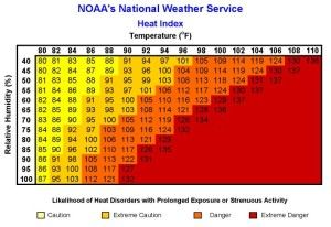 Heat stress: Don't underestimate the danger
