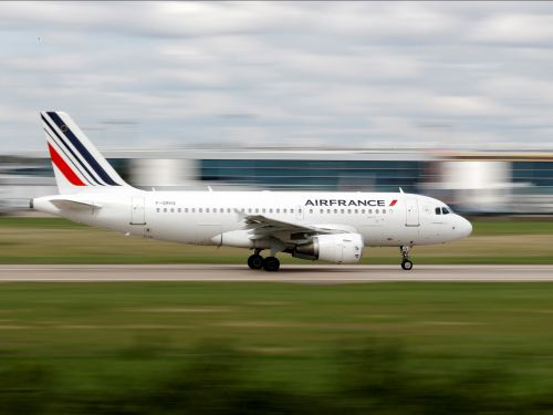A dog died in the cargo hold of an Air France flight from Amsterdam to Los Angeles
