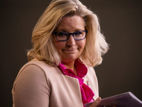 Liz Cheney's Republican enemies knocked her out of a job. But her supporters - like Jeb Bush and Elon Musk's brother - have quietly sent her campaign cash