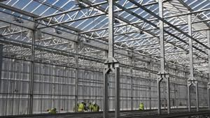 Old steel mill sprouts new businesses, including a new kind of indoor farm