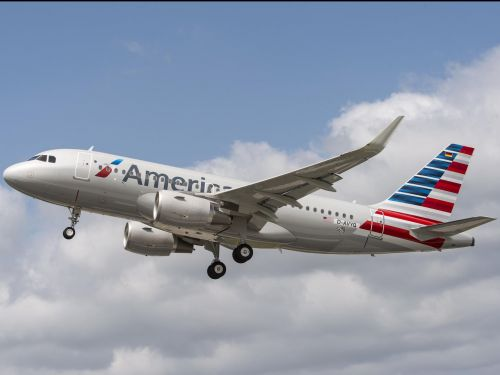 American Airlines has told US immigration officials to 'immediately refrain' from using its planes to fly children separated from their families