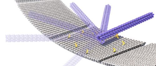 These high-speed 'nano-cranes' could form molecular assembly lines