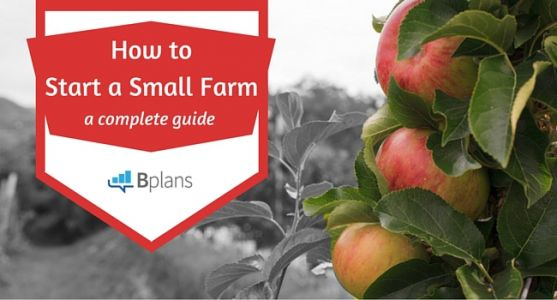 How to Start a Farm: Your Complete Guide to Success