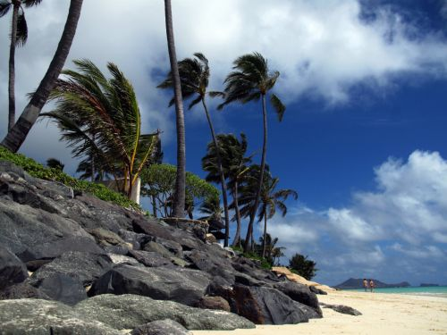 How to Have a Spectacular Day in Oahu, Hawaii