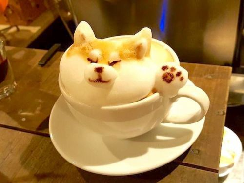 A man made his cappuccino foam look like a corgi - and people can't get over how realistic it looks
