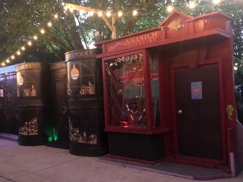 A family transformed their house into Diagon Alley for Halloween, and the 'Harry Potter'-themed display is spot-on