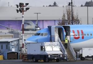 US grounding of Boeing jet shows limits of company's clout