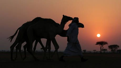 Economies of Mideast & Central Asia may not fully recover from coronavirus for at least a decade - IMF