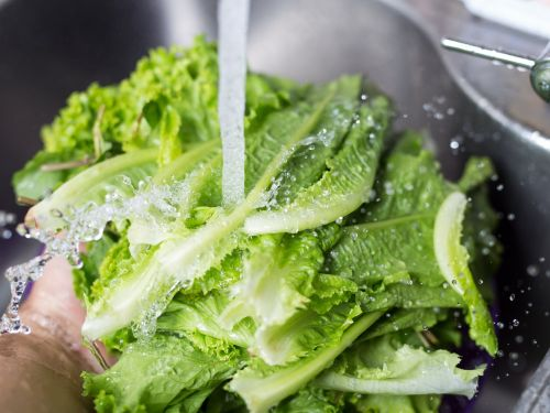 Washing your romaine lettuce won't eliminate E. coli - here's how to minimize your risk during the current outbreak