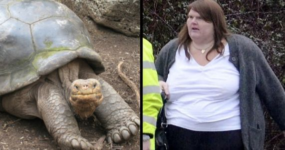 500-lbs Woman Killing World's Oldest Tortoise By Accidentally Sitting On It Is Fake News