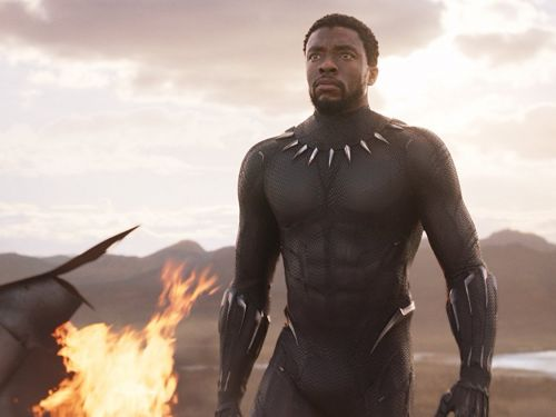 Facebook shut down a group that was planning to tank the 'Black Panther' Rotten Tomatoes audience score