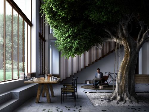 A farmhouse in Italy is getting a 50-year-old giant tree in its living room - take a look