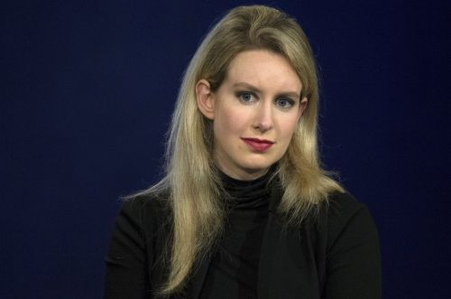 Elizabeth Holmes bought an un-potty trained Siberian husky as Theranos crumbled, and it was a poignant symbol of the messy situation