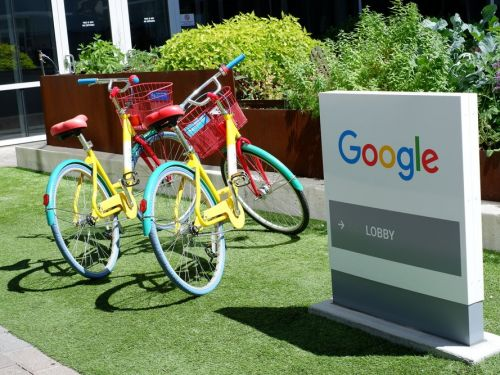 19 words only Googlers understand