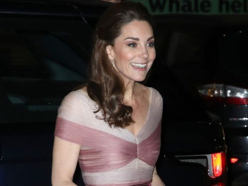 Kate Middleton turned heads in a rose-pink ball gown that made her look like a Disney princess