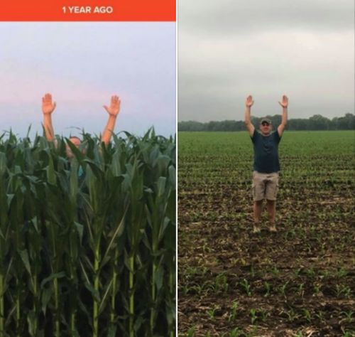 Shocking Before And After Photos Reveal The Truth About The Widespread Crop Failures The U.S. Is Facing In 2019