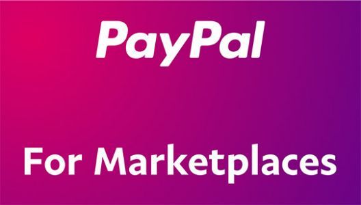 PayPal launches a payments product designed for marketplaces, platforms and crowdfunding sites
