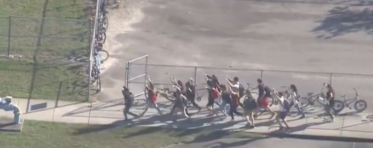 'Numerous fatalities,' at least 14 victims in Florida high school shooting; suspect in custody