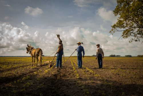 Original Content podcast: Netflix's 'Mudbound' offers a somber look at Mississippi in the 1940s