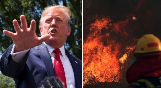 Trump volunteers US to 'help' with fires in the Amazon after conversation with Brazil President Bolsonaro, who is actively choosing not to stop them