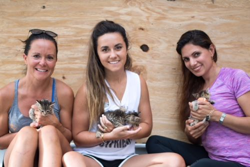 Coldwell Banker Sea Coast Advantage Funds Pet Sanctuary for Dogs and Cats Abandoned in Hurricane Florence