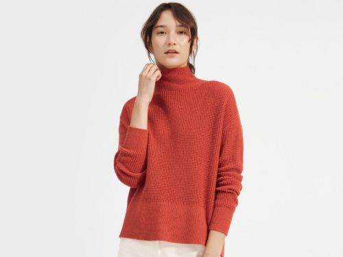 I rarely spend more than $100 on anything, but I dropped $155 on Everlane's cashmere turtleneck - and I don't regret it