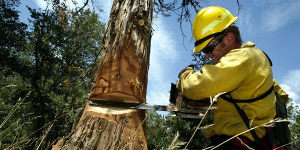 The 34 most dangerous jobs in America