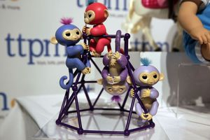 Shoppers say fake Fingerlings were sold through big sites