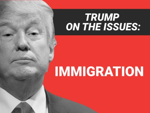 Trump claimed illegal immigration cost the US over $200 billion a year. Even anti-immigration groups were confused