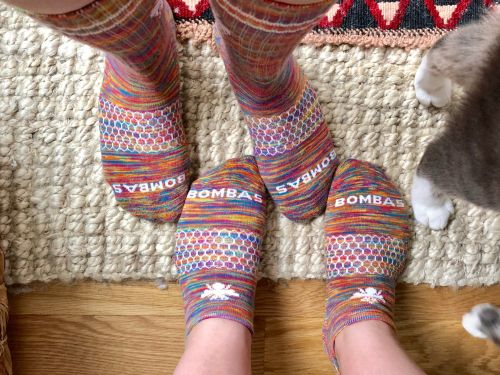 Bombas has launched rainbow socks for Pride Month - and it's sending 40% of all the socks it donates to LGBTQ youth homeless shelters