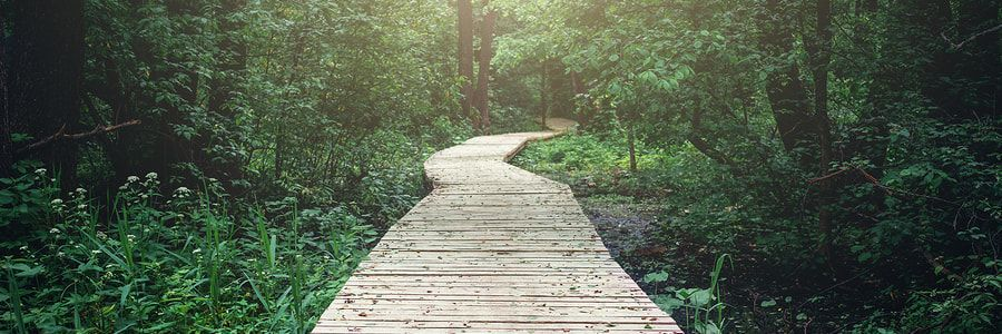 How to Test and Optimize Your New Business's Customer Journey
