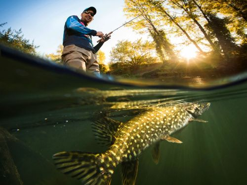 11 fishing horror stories that will make you want to stay on land