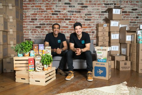A startup selling mushrooms kits to millennials just got $4 million to expand further into Costco and Target