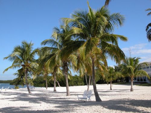The death of an American tourist in Turks and Caicos is being investigated as a murder