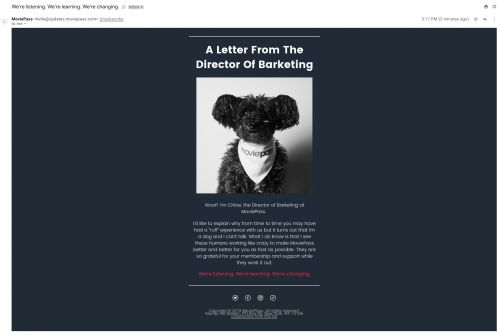 MoviePass sent subscribers a bizarre apology email written from a dog's point of view, and many found it insulting and unhelpful