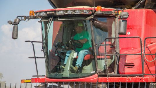 Is Fear Driving Sales Of Dicamba-Proof Soybeans?