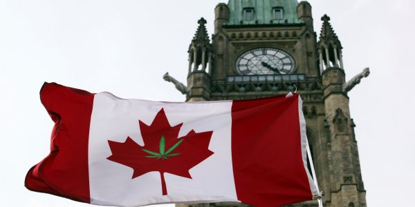 Weed stocks are under pressure on the eve of Canada's legalization