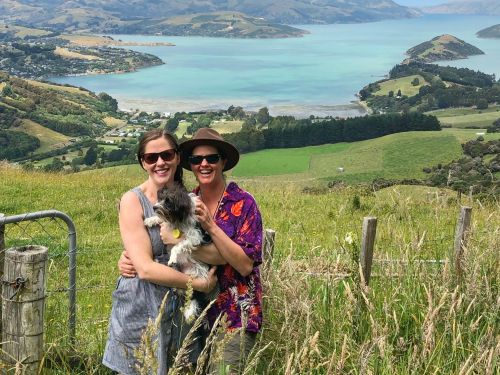 My partner and I are full-time house sitters in New Zealand. Here's how the pandemic has affected our unusual living arrangement