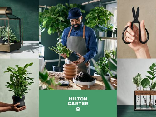 Target just launched a limited-edition collection with plant stylist Hilton Carter, including a ton of beautiful pots and tools for plant parents
