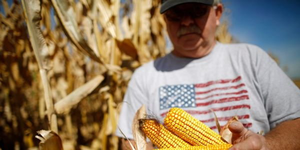 Corn prices have jumped 142% in the past year amid rising demand from China, drought in Brazil