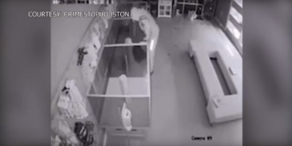 Surveillance video shows 2 suspects breaking into a Houston pet store and stealing $44,000 worth of puppies in under 1 minute