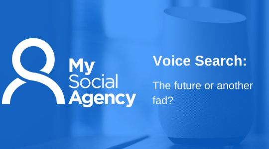Voice Search: The Future or Just Another Technology Fad?