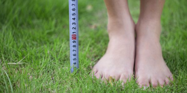 Ranked: The countries with the shortest people in the world