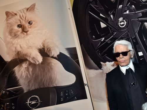 Karl Lagerfeld famously pampered his cat. Here's what Choupette's lavish life is really like