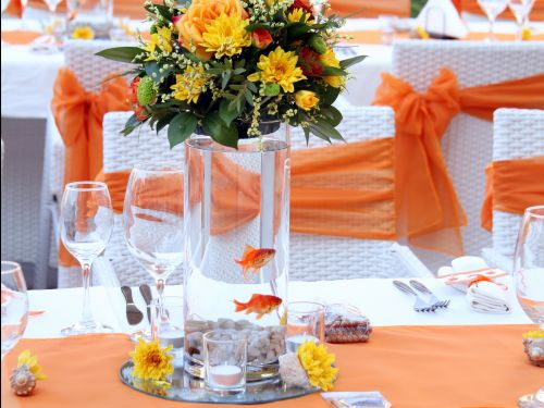 A maid of honor says that she had to care for 90 goldfish that were purchased as wedding favors - here's why experts warn against using animals as gifts